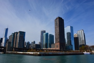 Chicago View from Boat Cruise